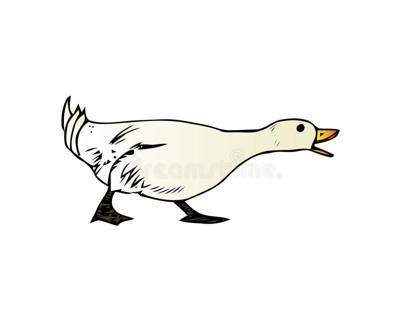 Oie domestique, illustration de vecteur d'élevage de volaille d'isolement sur un fond blanc illustration stock