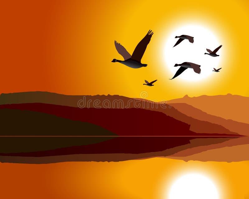Oies volant par l'intervalle de montagne au lever de soleil/au soleil illustration stock