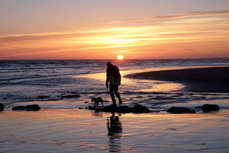Oigenkännlig man som går med hans hund på en öde strand på soluppsättningen royaltyfria bilder