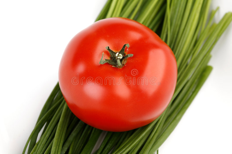 Oignon de tomate et de source photographie stock libre de droits