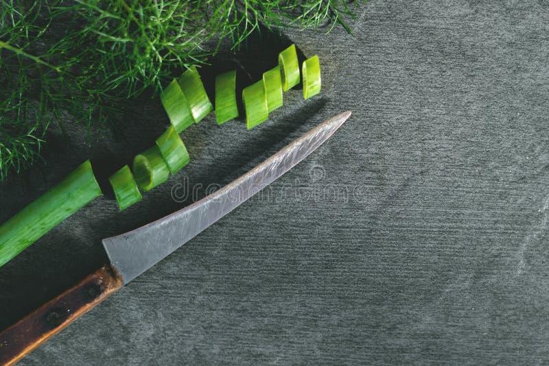 Oignon et aneth de verdure photo libre de droits
