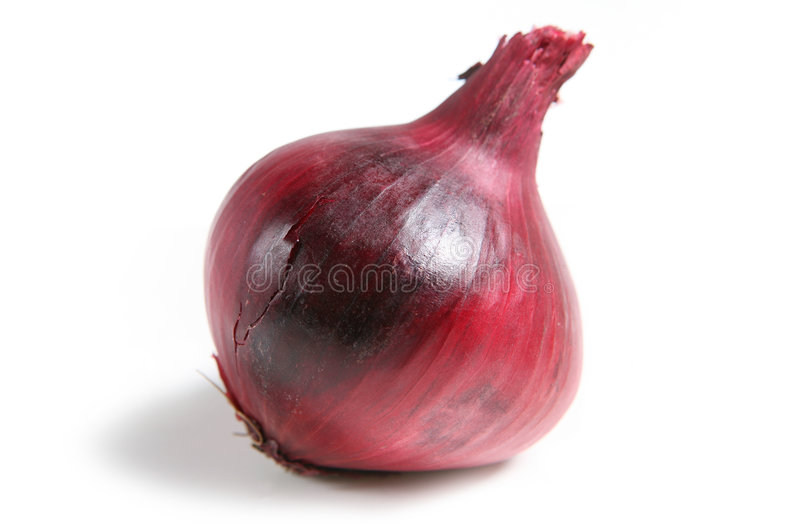 Oignon rouge image stock