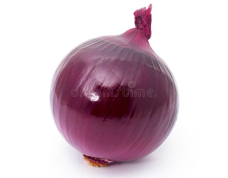 Oignon rouge images stock