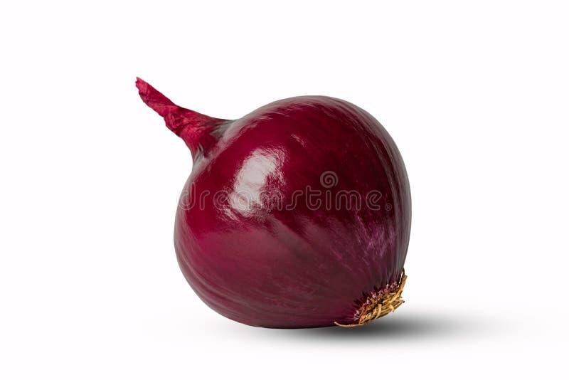 Oignon rouge photographie stock