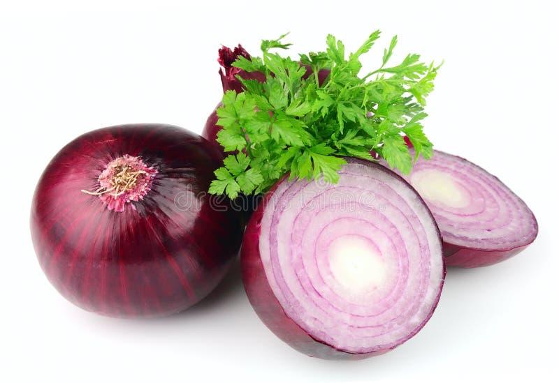 Oignon rouge et persil images stock