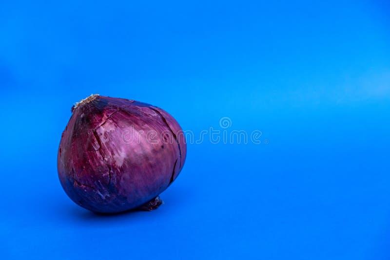 Oignon rouge sur un fond bleu photos libres de droits