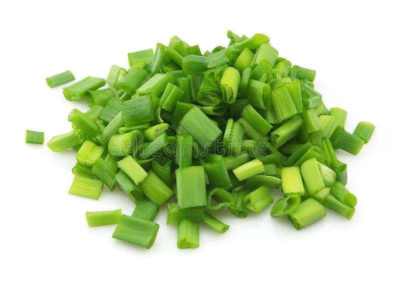 Oignon vert photo libre de droits