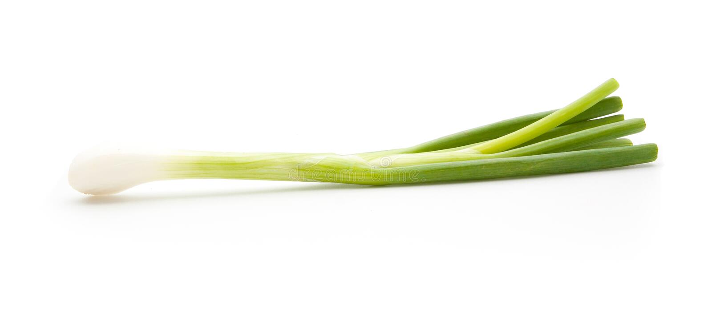 Oignon vert d'isolement photos libres de droits