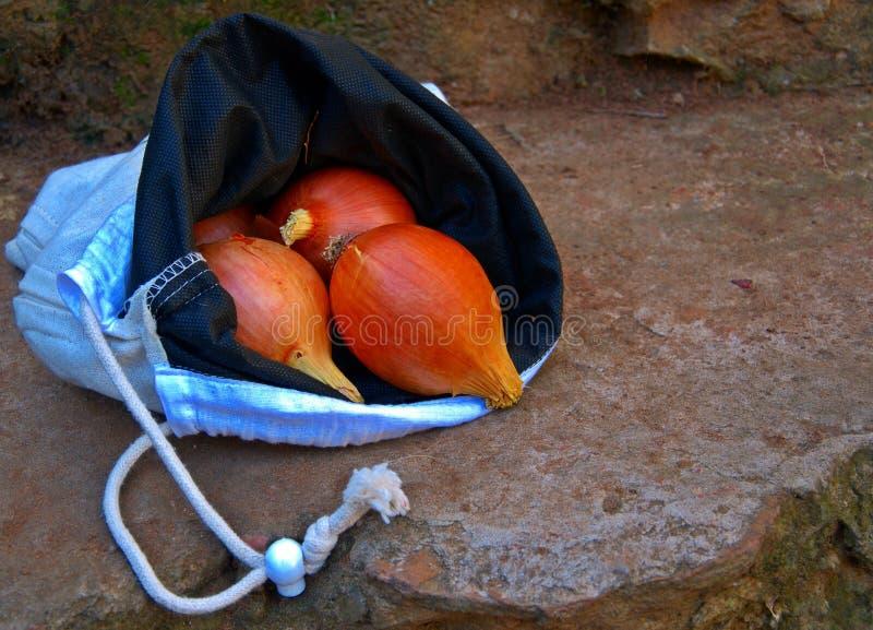 Oignons dans le sac image libre de droits