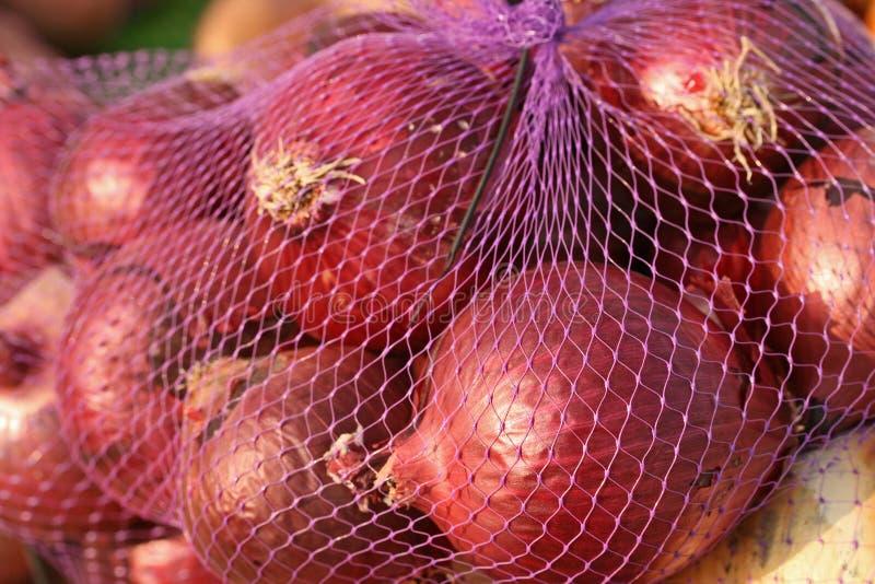 Oignons du marché de fermiers photo libre de droits