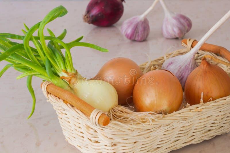 Oignons jaunes et oignons verts avec les racines regrown, ail dans un s images stock