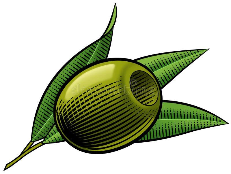 Oiive Pitted verde. foto de stock