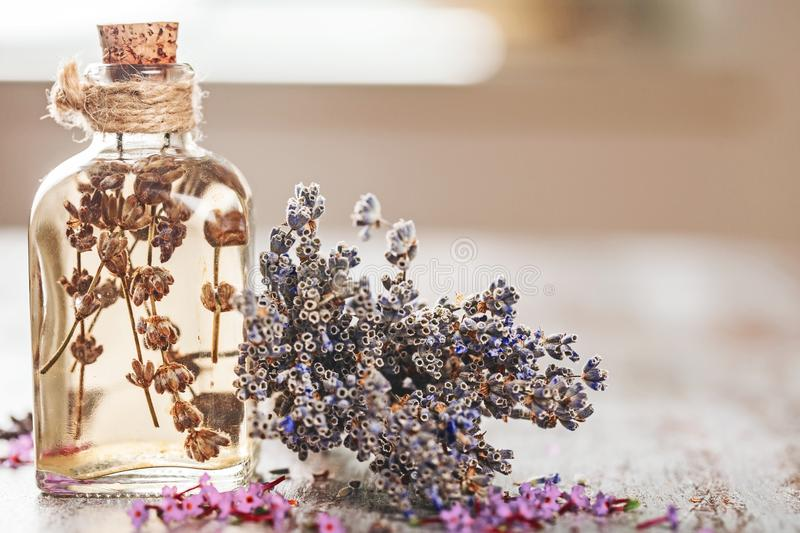 Oil. Apothecary decoration nobody natural floral medical stock images