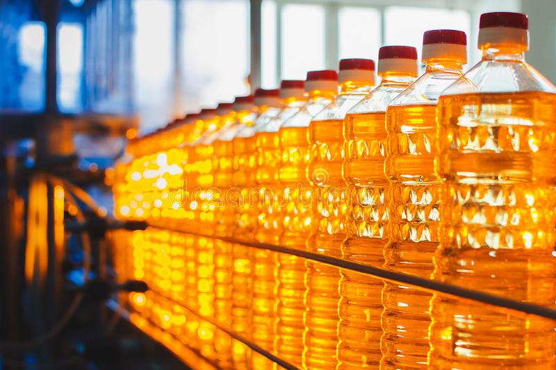 Oil in bottles. Industrial production of sunflower oil. Conveyor stock image