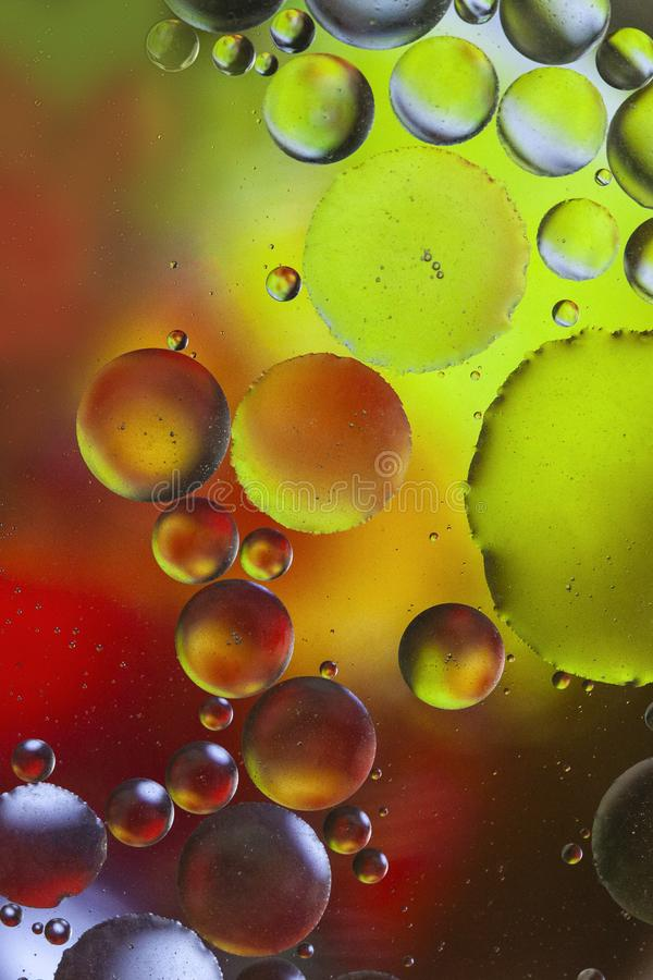 Oil bubbles macro pattern background. Green and red Oil droplets round shape pattern smooth background vector illustration