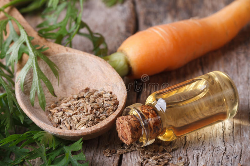 Oil of carrot seeds in a glass bottle closeup top view. The essential oil of carrot seeds in a glass bottle closeup horizontal. top view stock image