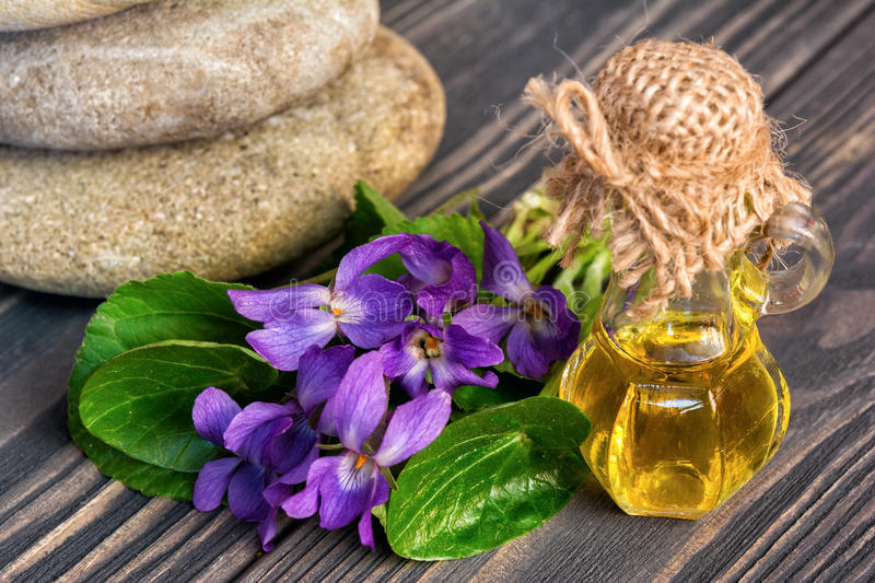 Oil and flower of violets for spa stock photos