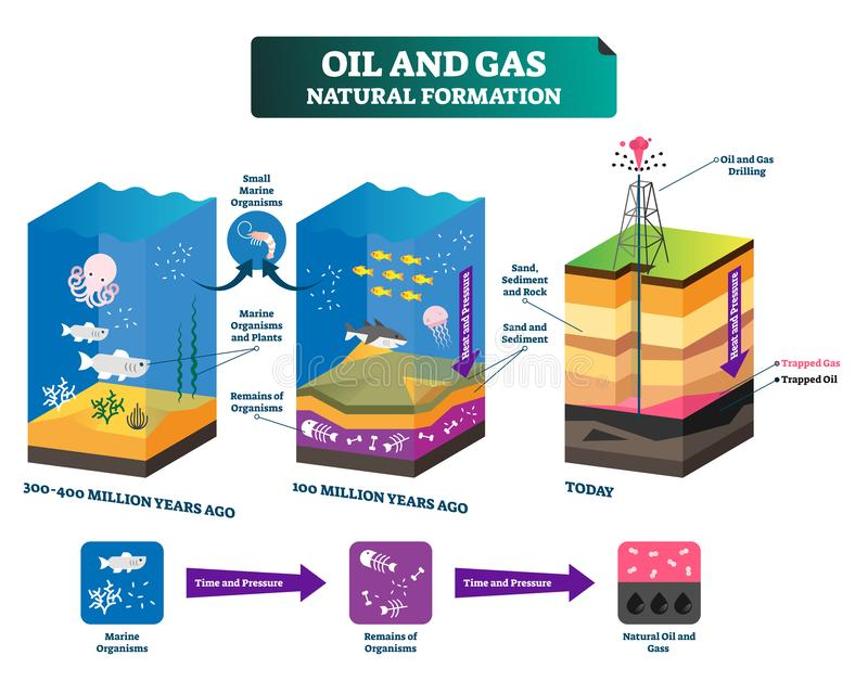 Oil and gas natural formation labeled vector illustration explain scheme. Time line from million years ago to today. Educational drilling technology process to stock illustration