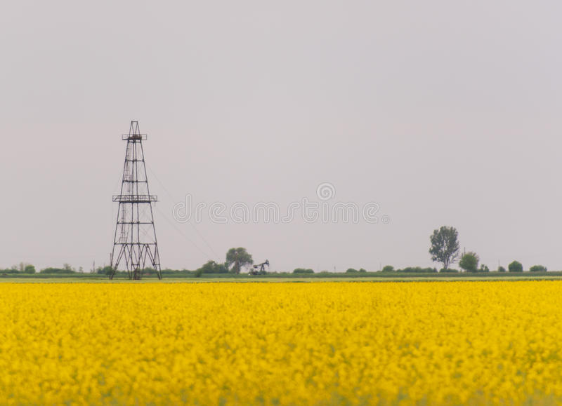 Download Oil And Gas Well Rig, Outlined Rural Canola Field Stock Image - Image: 30847447
