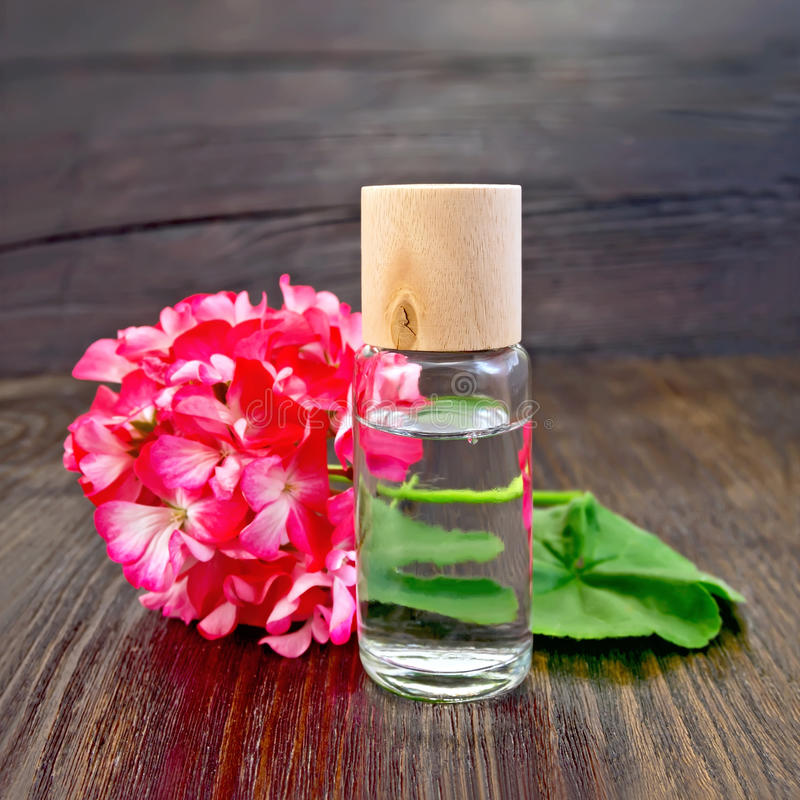 Oil with geraniums on board stock photography