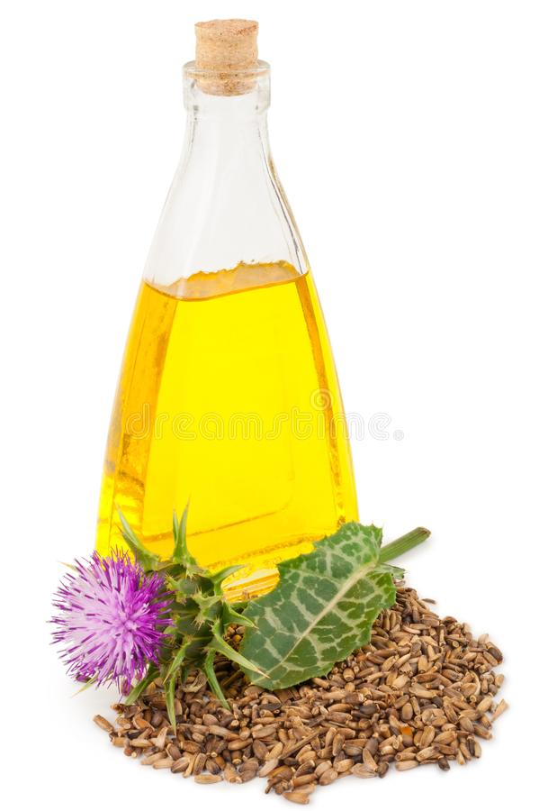Free Oil Of Milk Thistle Stock Photography - 100837812