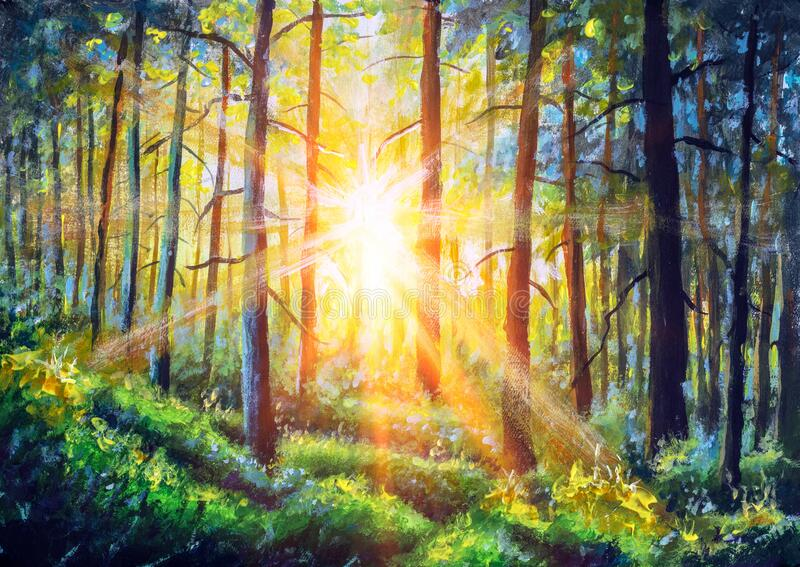 Oil painting canvas Sunset Or Sunrise In Forest Landscape. Sun Sunshine With Natural Sunlight And Sun Rays Through Woods Trees In royalty free stock image