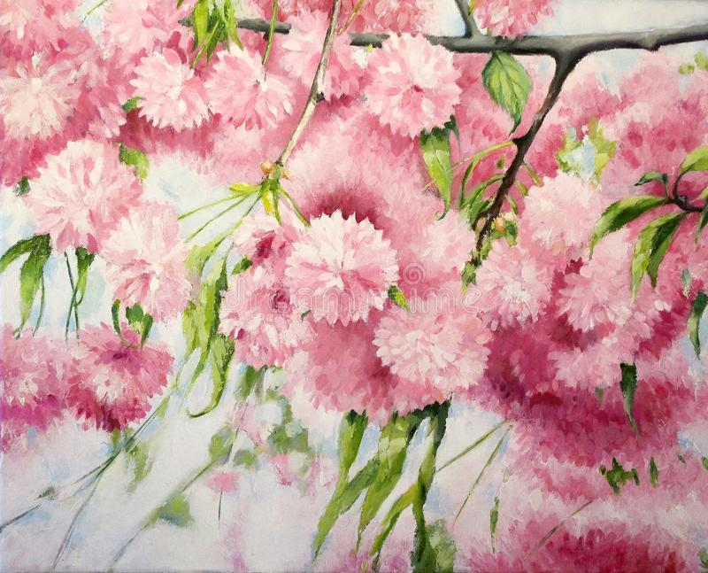 Oil painting on canvas of Spring Pink Cherry Blossom. stock illustration