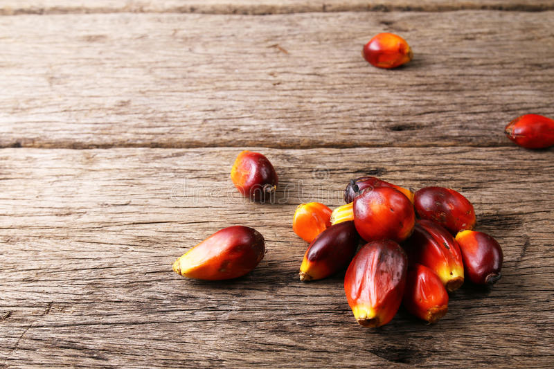 Oil palm fruits - Series 2. Oil palm fruits on wooden surface stock photography
