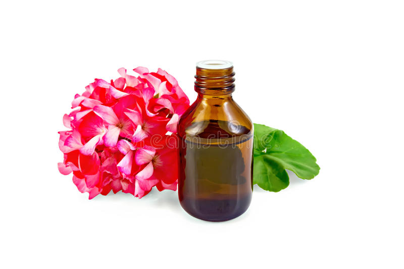 Oil with pink geraniums in dark bottle royalty free stock image