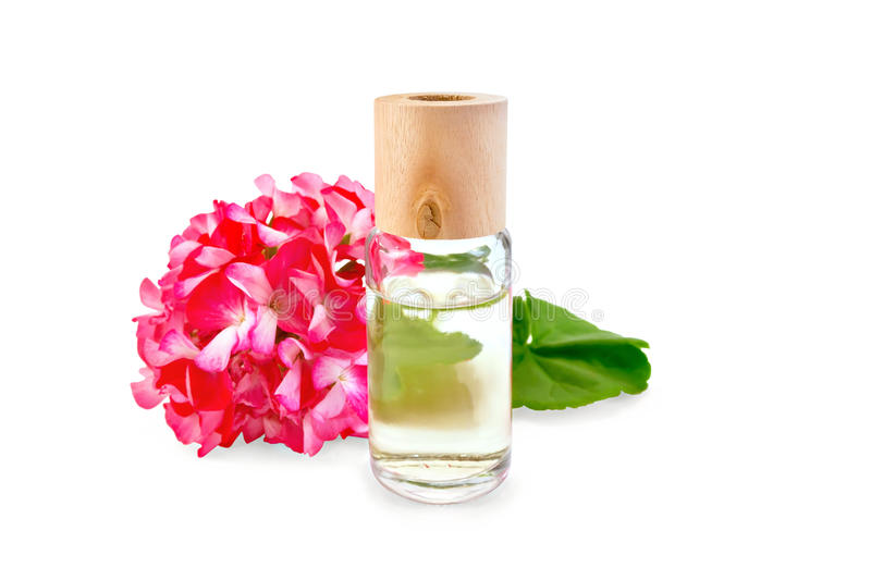 Oil with pink geraniums in glass bottle royalty free stock photography