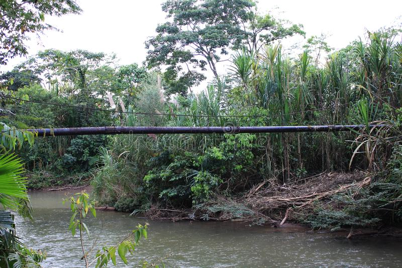 Oil pipe running over a tropical river and the surrounding forest being destroyed stock photos