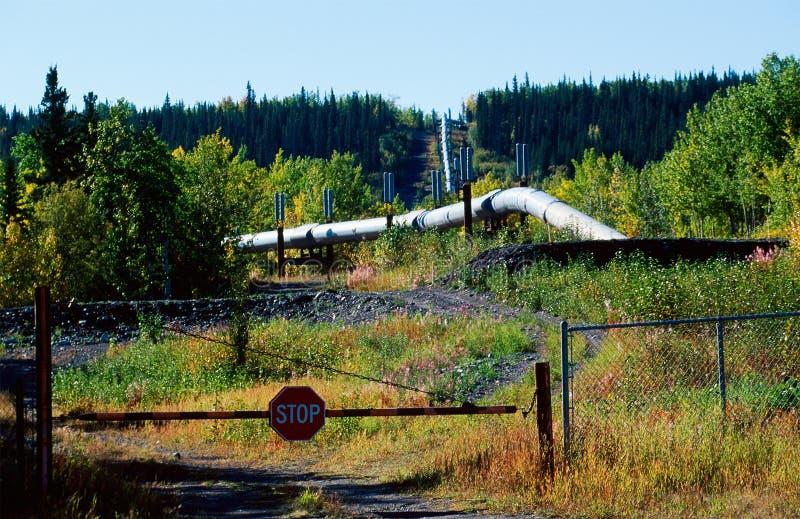 Download Oil pipeline stock image. Image of fall, nature, alaska - 6528673