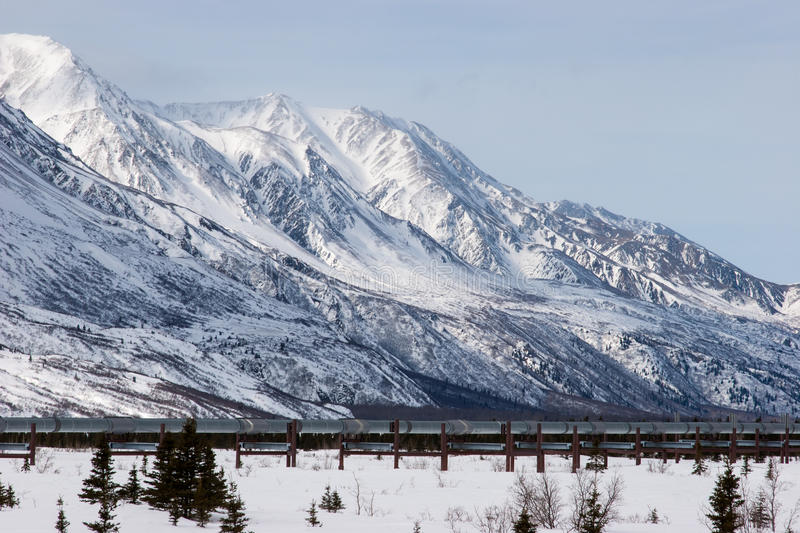 Oil Pipeline in Wilderness royalty free stock photography