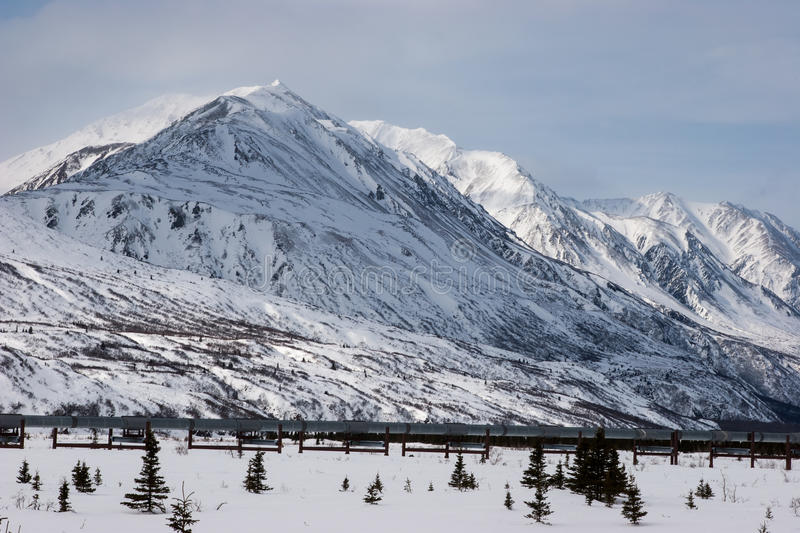 Oil Pipeline in Wilderness royalty free stock images