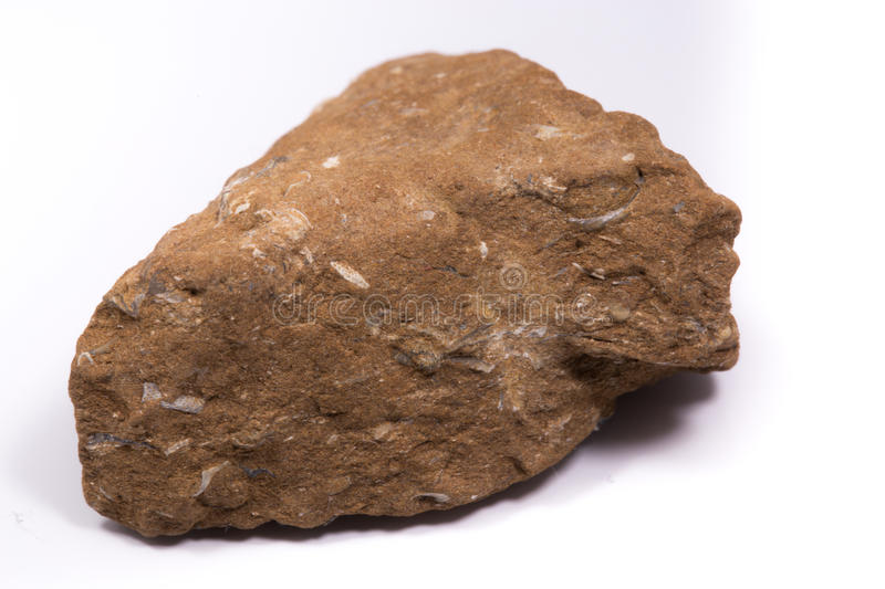 Oil shale stone stock image