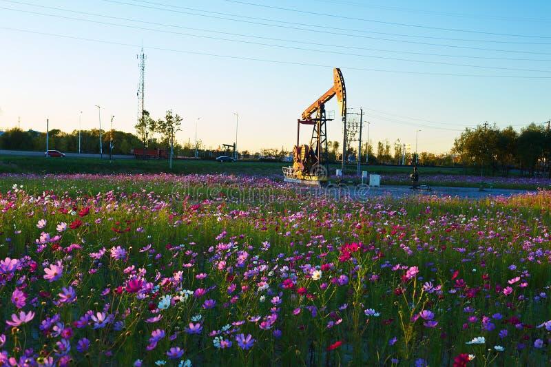 Oil sucking machine in flowers fotografía de archivo libre de regalías