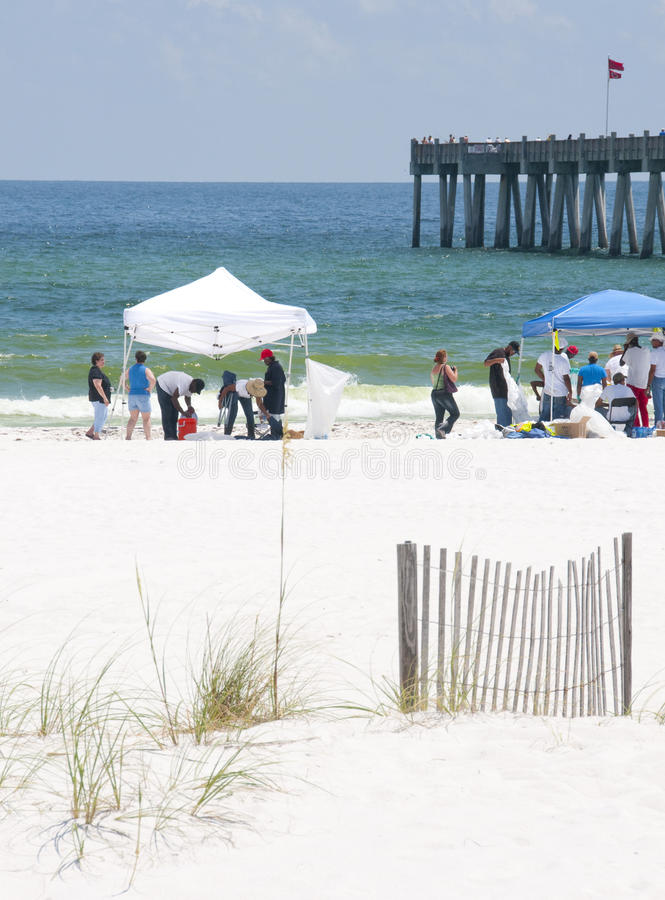 Download Oil Washes Ashore In Pensacola Beach Editorial Photo - Image: 14859951