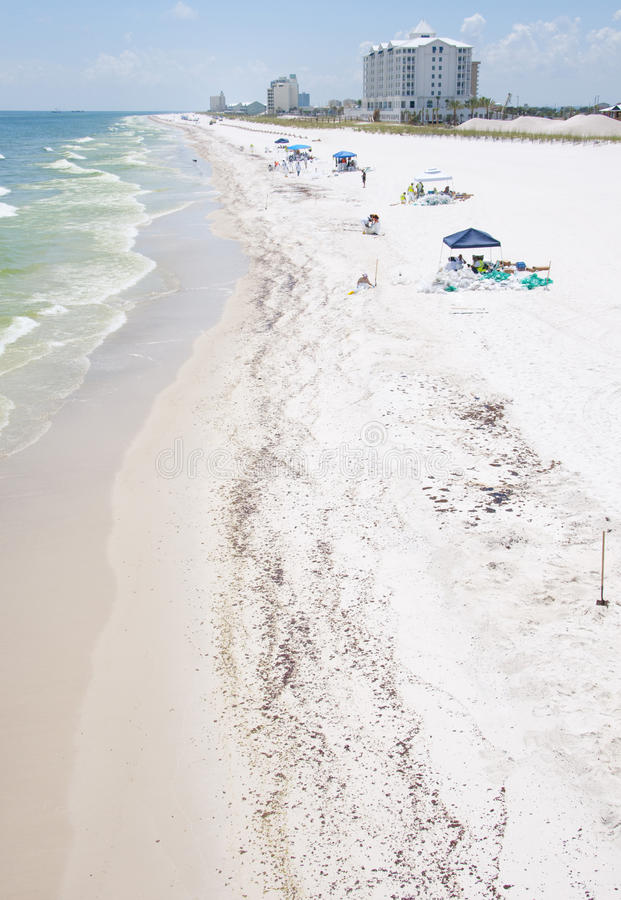 Download Oil Washes Ashore In Pensacola Beach Editorial Photography - Image: 14860007