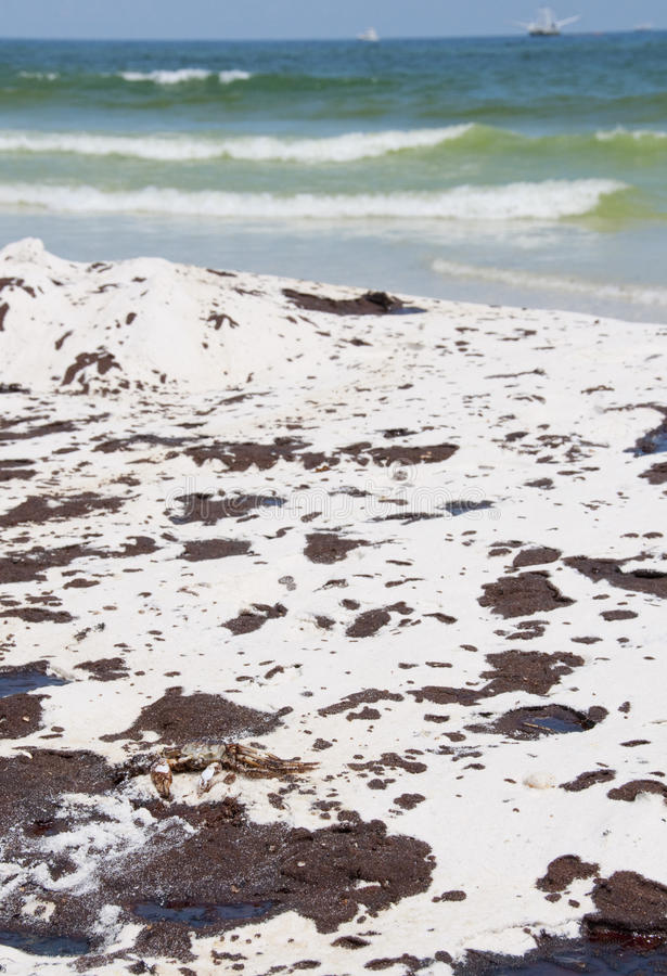 Download Oil Washes Ashore In Pensacola Beach Editorial Stock Photo - Image: 14860153