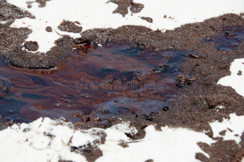 Download Oil Washes Ashore In Pensacola Beach Editorial Stock Image - Image: 14860154