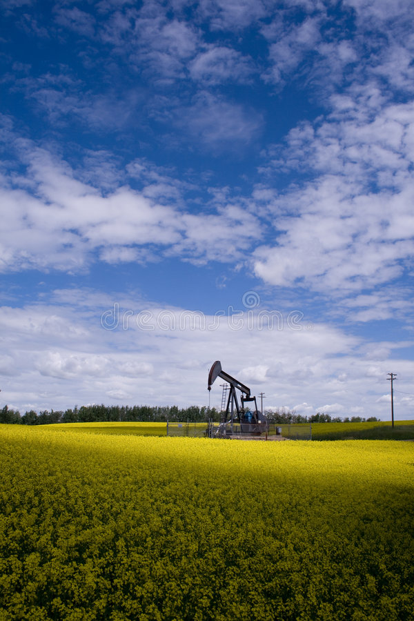 Oil well in yellow field royalty free stock image