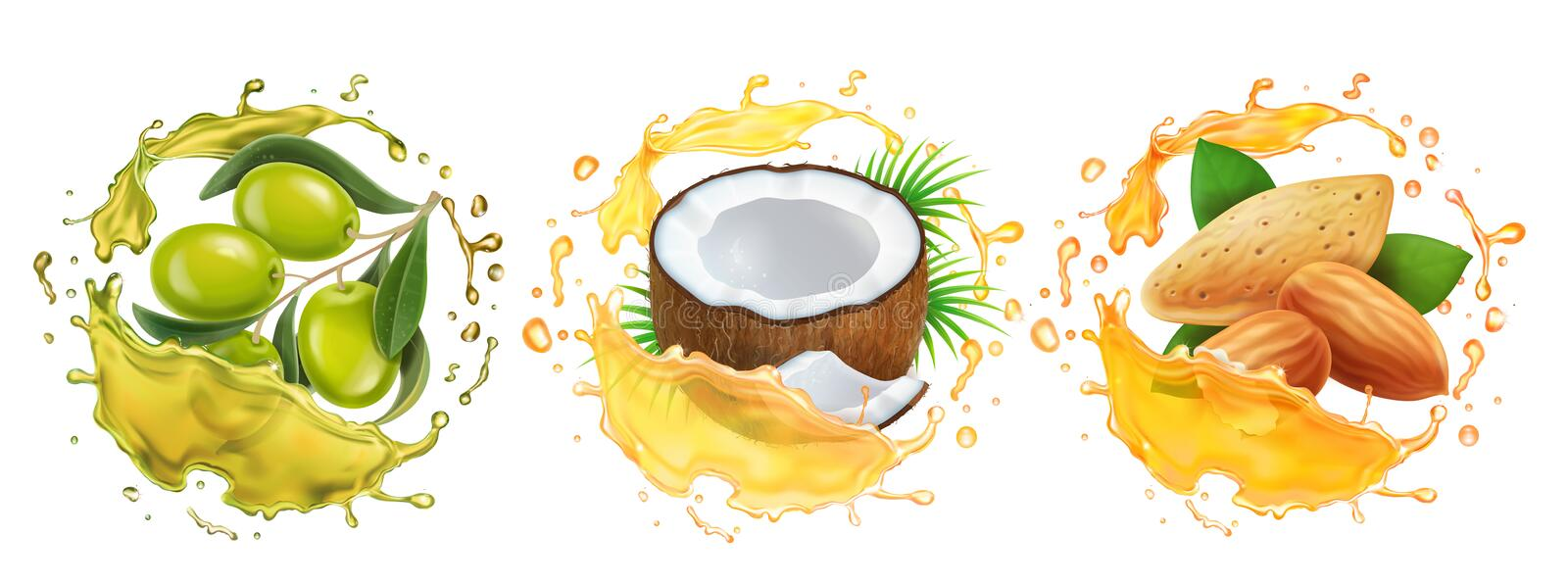 Oils set. Coconut, olive and almond oil splashes. Realistic collection stock illustration