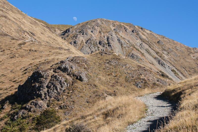 Ointressanna lutningar på Mt Robert i Nelson Lakes National Park arkivbilder