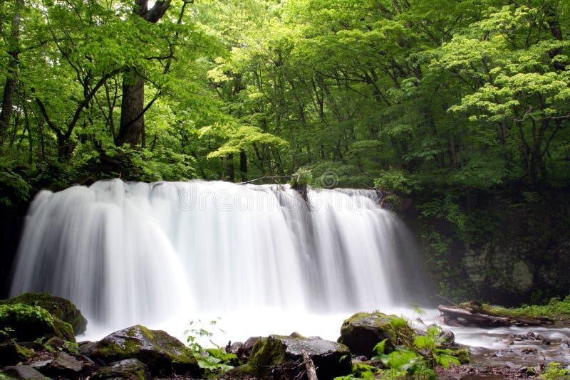 Oirase-gawa Fluss stockfoto