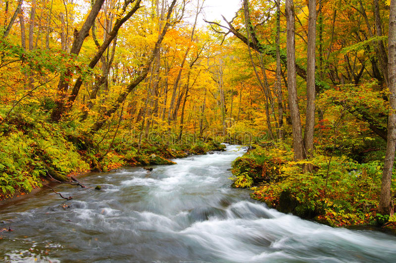 Download Oirase River stock image. Image of relaxing, earth, flowing - 17021039