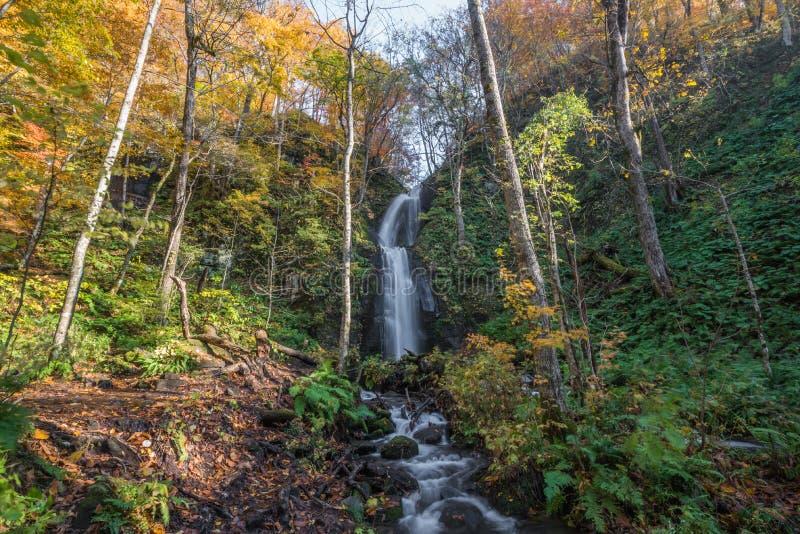 Oirase-Schlucht im Herbst stockfotografie