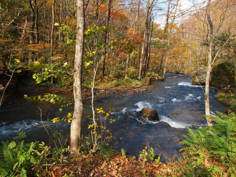 Download Oirase Streams, Aomori, Japan Stock Image - Image of streams, oirase: 35252461