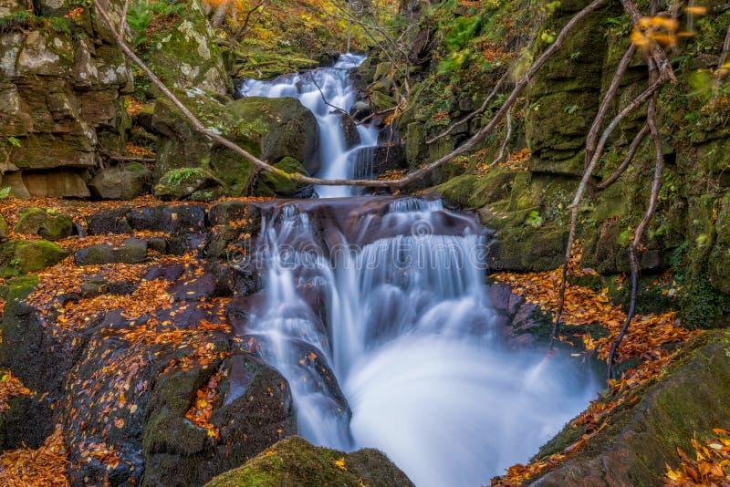 Oirase-Strom mit kleinem Wasserfall lizenzfreie stockbilder