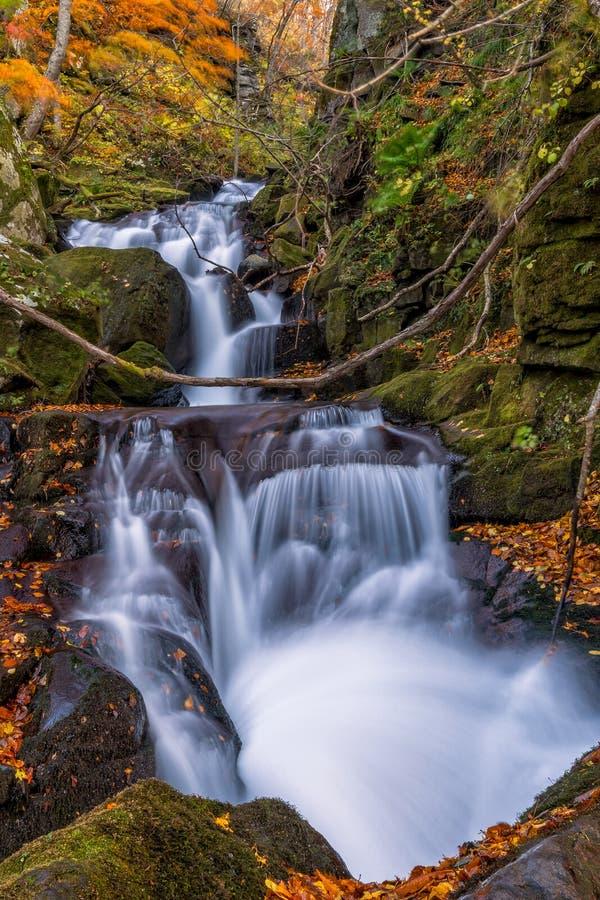 Oirase-Strom mit kleinem Wasserfall lizenzfreies stockbild