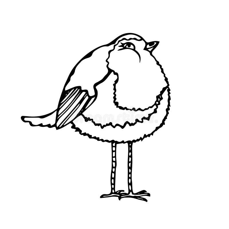 Oiseau adorable mignon D'isolement sur un vecteur tiré par la main de croquis de fond de bande dessinée blanche de griffonnage illustration de vecteur